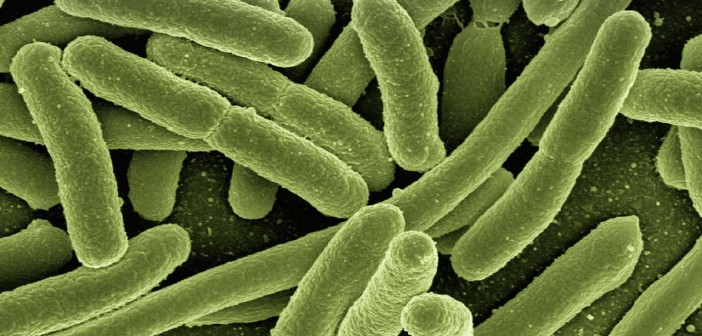 MS: Evaluări în spitale pentru strategia împotriva infecțiilor nosocomiale